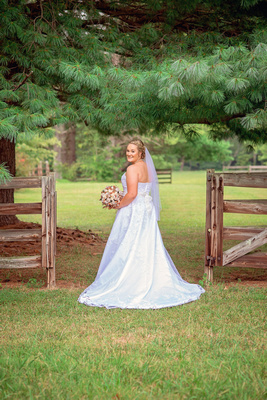 Farm, Fence, Bridals, Country
